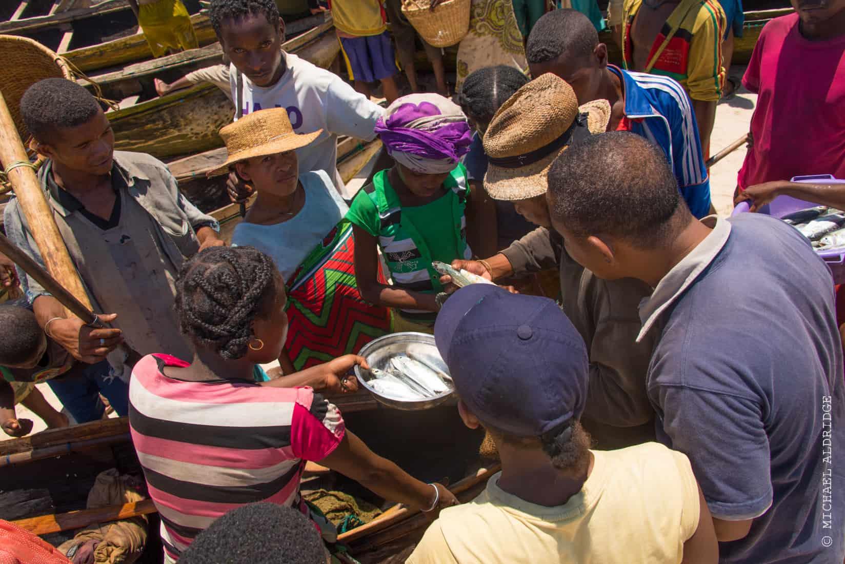 Negotiations at the fishing market