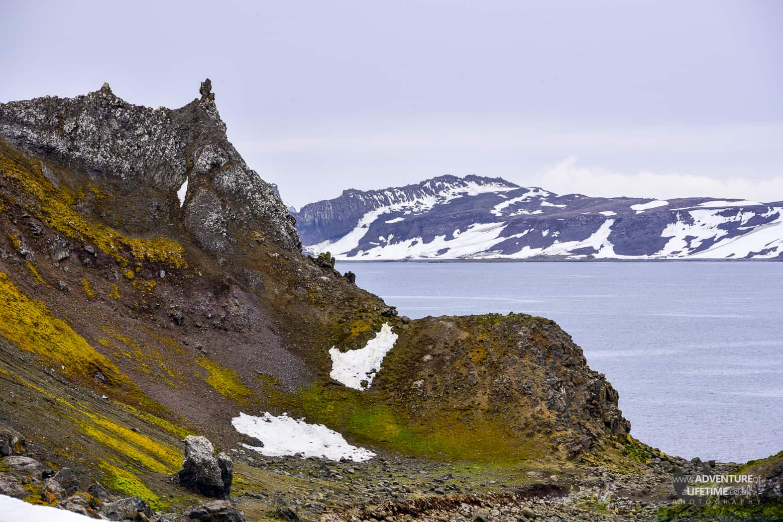 Barrientos Island in South Shetlands, Antarctica
