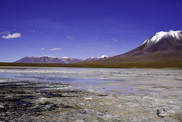 Flamingo Lake in Bolivia