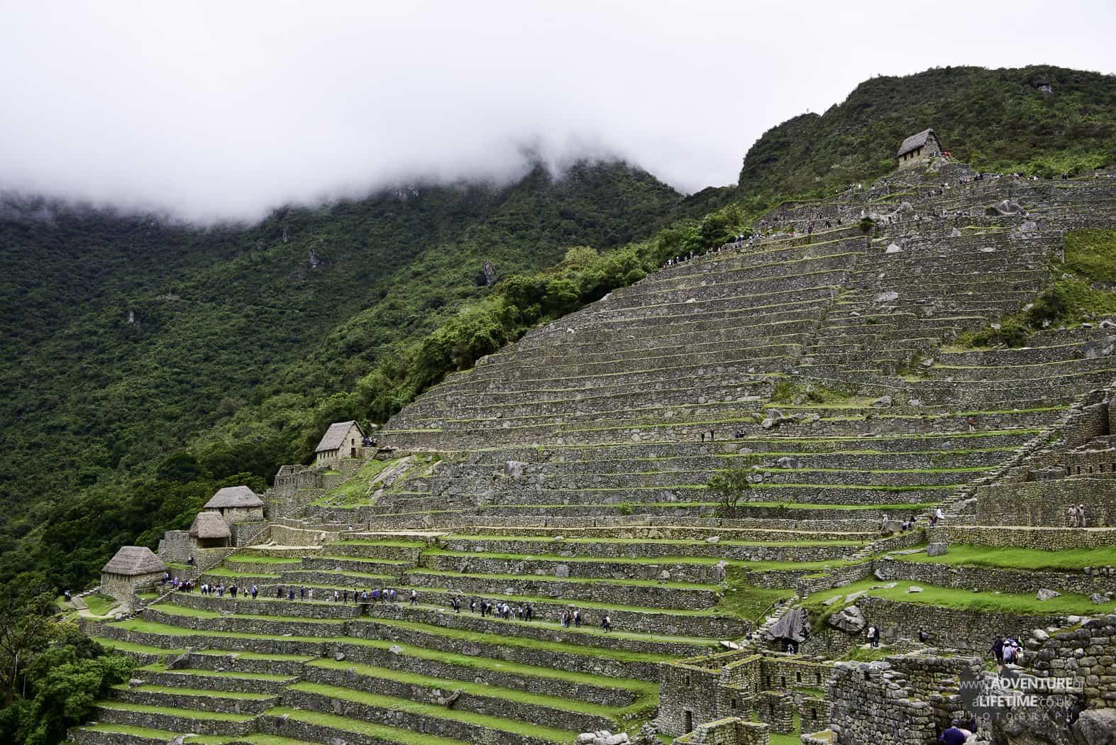 Machu Picchu Terrances