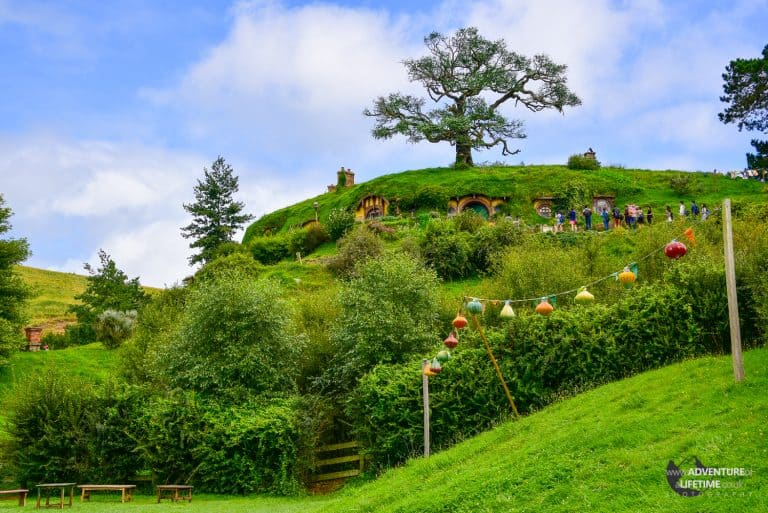 Hobbiton Hill in The Shire