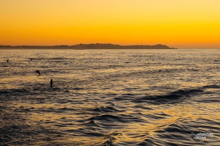 Kaikoura Sunrise with Dolphins