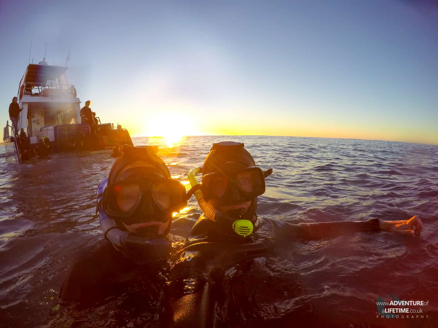 Michael and Dora Dolphin Swim in Kaikoura