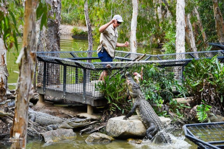 Hartley's Croc Park