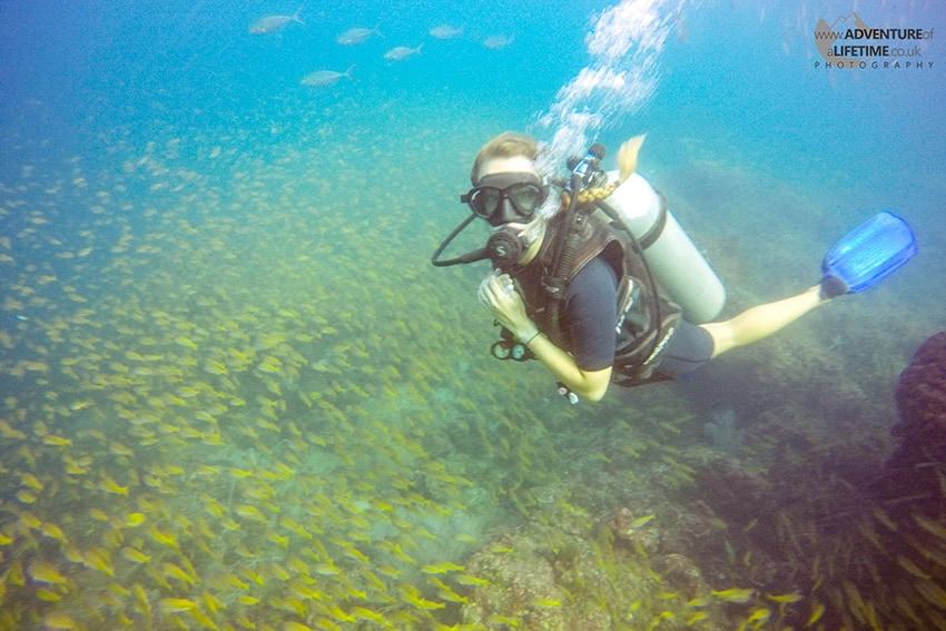 Dora Scuba Diving Koh Phi Phi