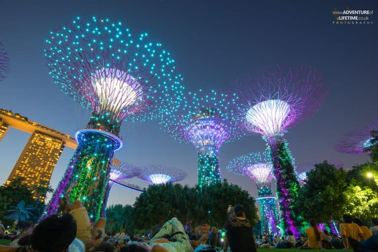Gardens By The Bay At Night Blue Light