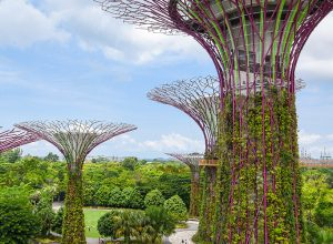 Flying visit to Singapore and Kuala Lumpur