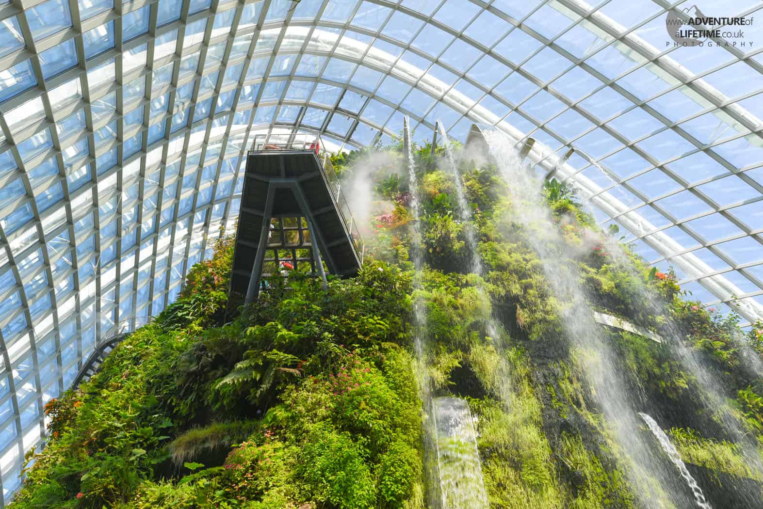 The Cloud Forest Gardens By The Bay