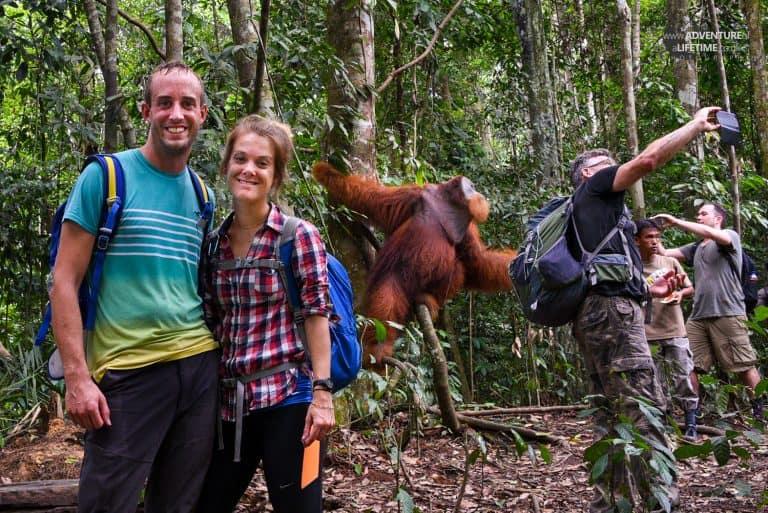 Dora and Michael with a male Sumatran Orangutan