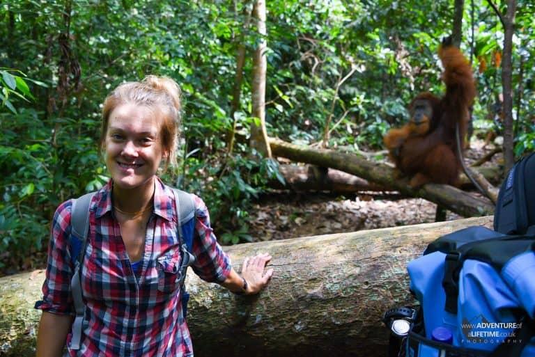 Dora and male Sumartran Orangutan