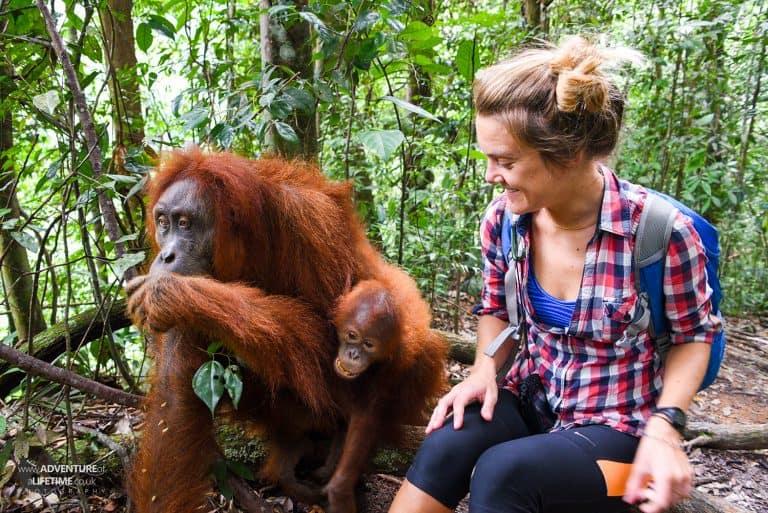 Dora with Sumatran Orangutan Jackie and her baby